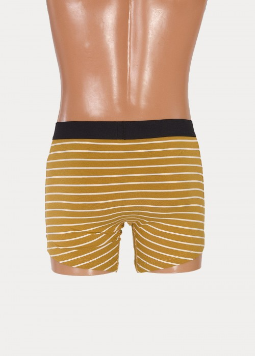 Levi's® 200sf Vintage Stripe Boxer Brief 2 Pack - Pale Yellow